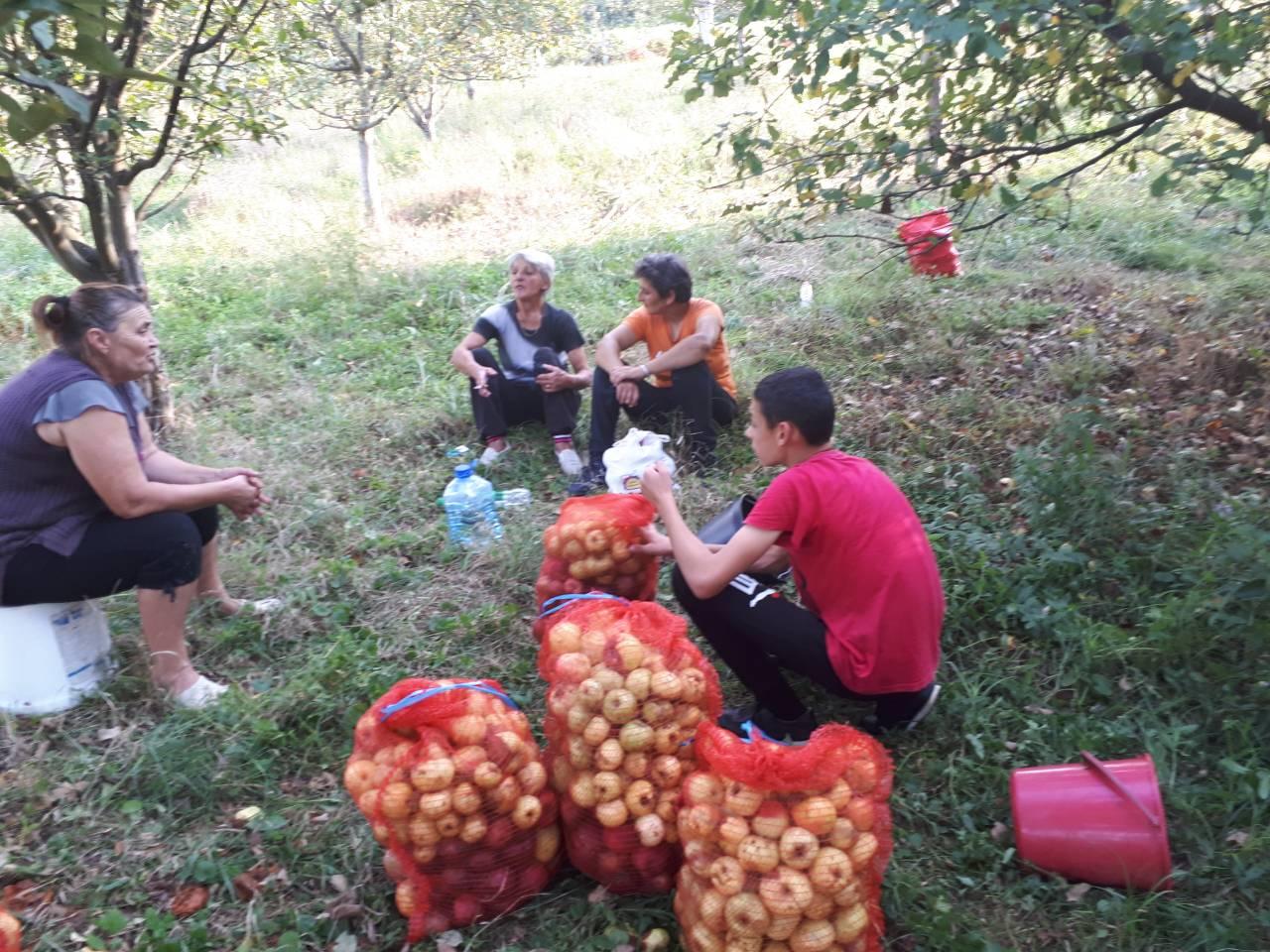 Priroda daruje zdravljem u voćnjaku Udruženja Janje